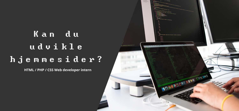 Web udvikler