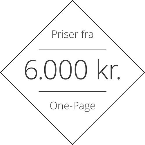 Hjemmeside pris