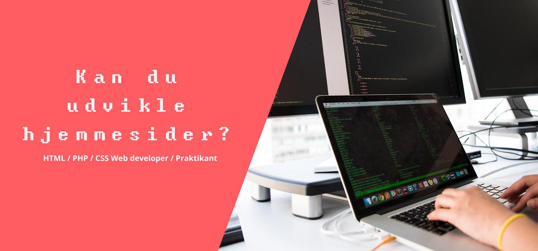 Web og konceptudvikling praktikant