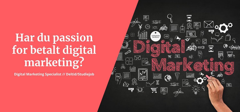 Digital Marketing Specialist - Aalborg - Job / Deltid